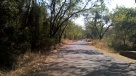 Cycling towards the Kanheri caves